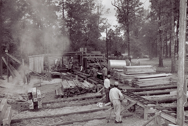 20th Century Lumber and Oil Boom Companies